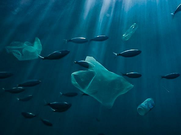 Plastic free Sardegna